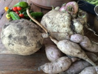 Sweet potatoes: the purple variety